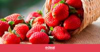 Frutillas: Una temporada en la nueva normalidad